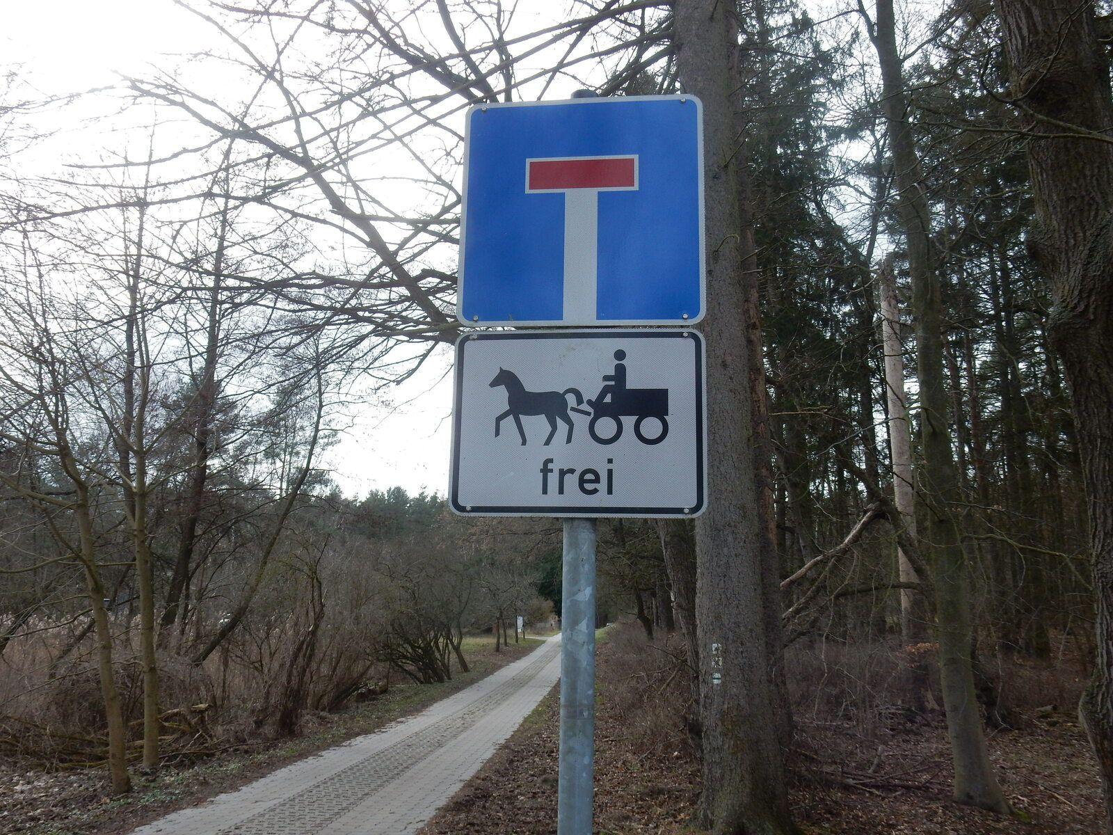 Schneeglöckchenlauf 5 km,15 Km und 110 Km Radfahren