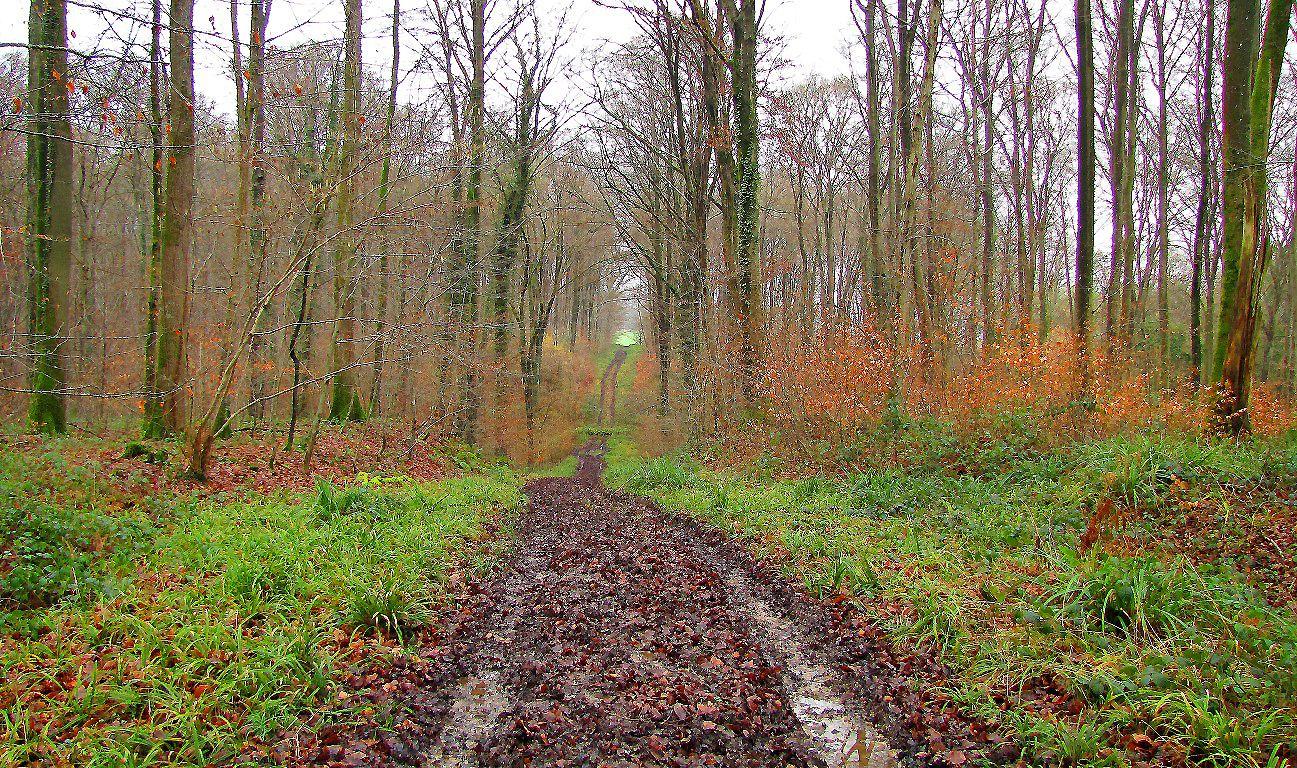 la Route Droite