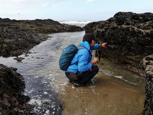 Avec un couple Amoureux ... de la Biodiversité marine des estrans rocheux !!!