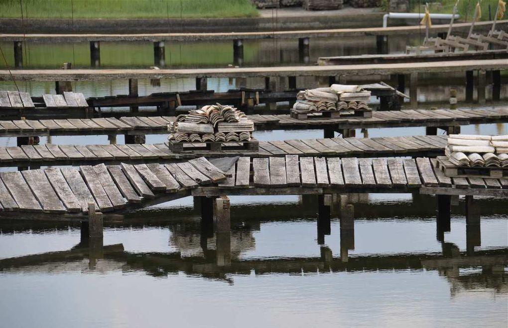 Le Bassin d'Arcachon Autrement