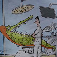 Le crocodile et le dentiste...