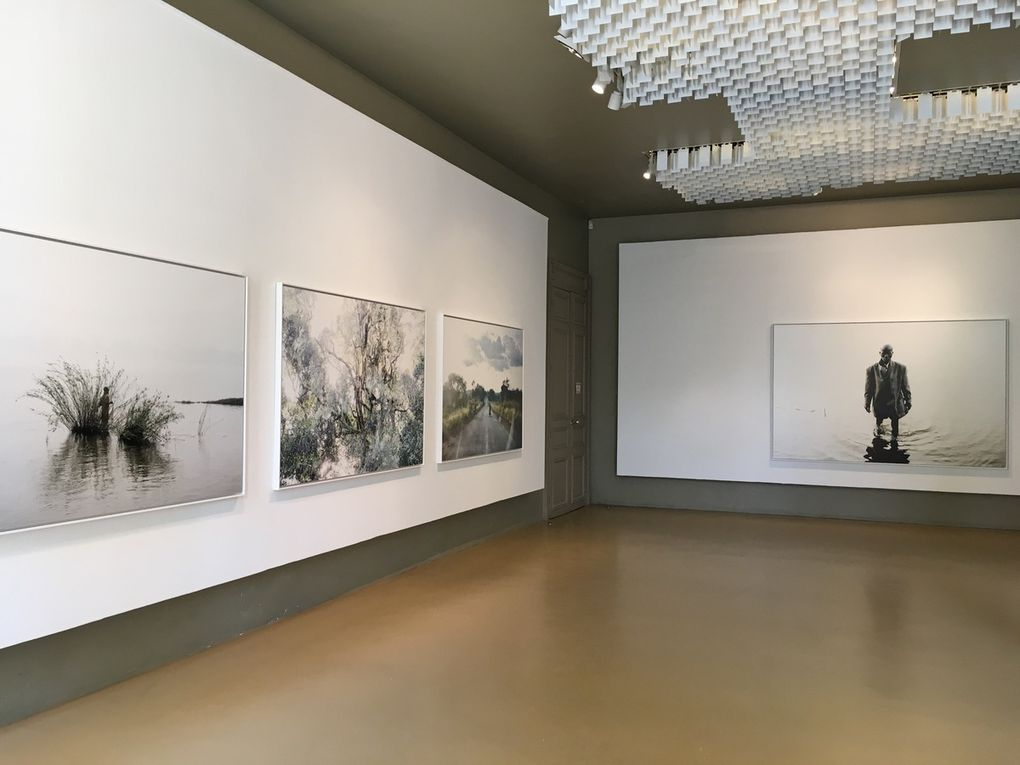 "Exposition ""Wilting Point"" de William Daniels au Pavillon Carré de Baudouin"