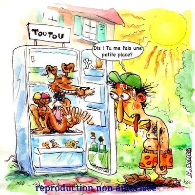 Des astuces pour qu'il supporte la chaleur