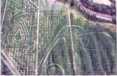 LABYRINTHE VEGETAL