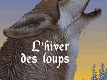 Garin Trousseboeuf Tome 2 : L'hiver des loups