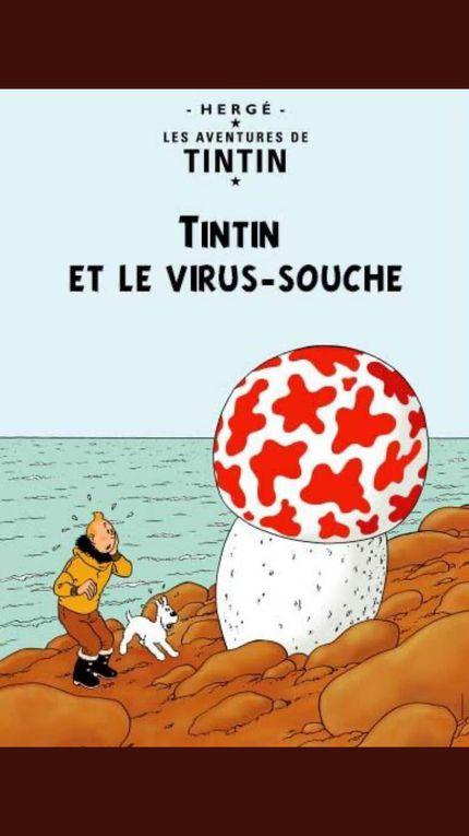 Les TINTIN revisités au temps du COVID-19 : Merci Laurent