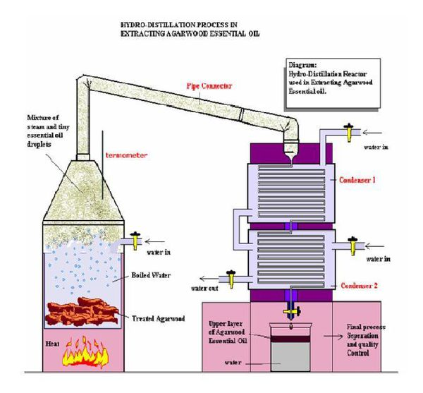 Steam distillation process used to extract agarwood essential oils.
