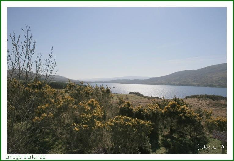 Images d'irlande, début avril 2007.
