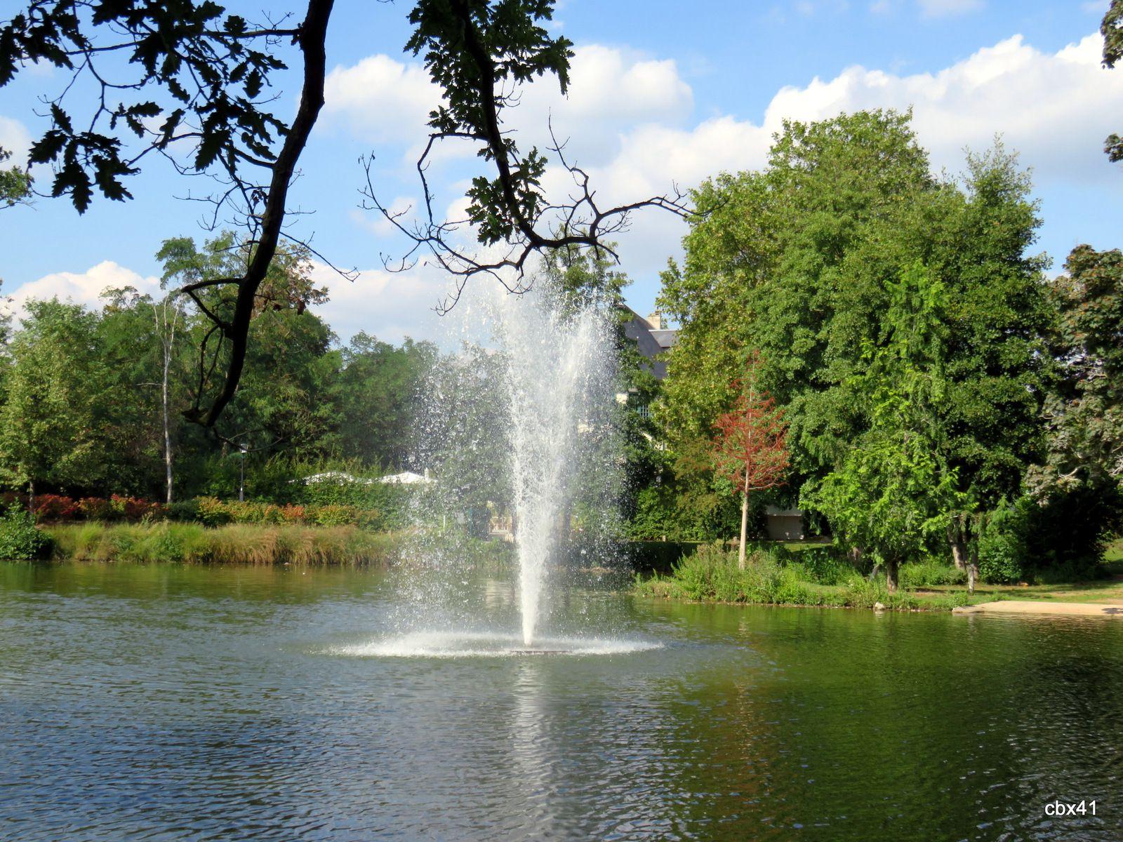Lac des Ibis, Le Vésinet (Yvelines), Oies bernaches