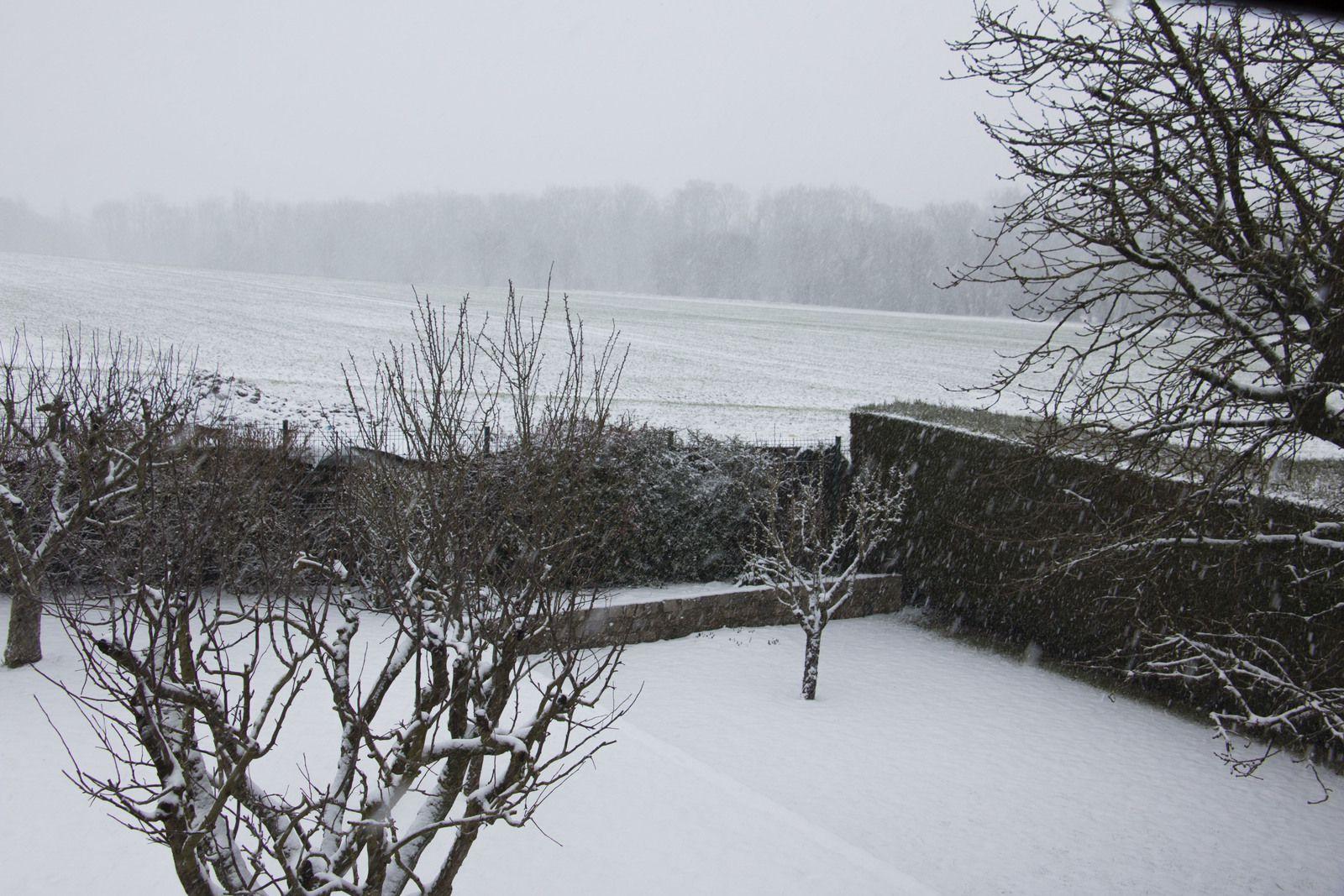 La neige arrive enfin...