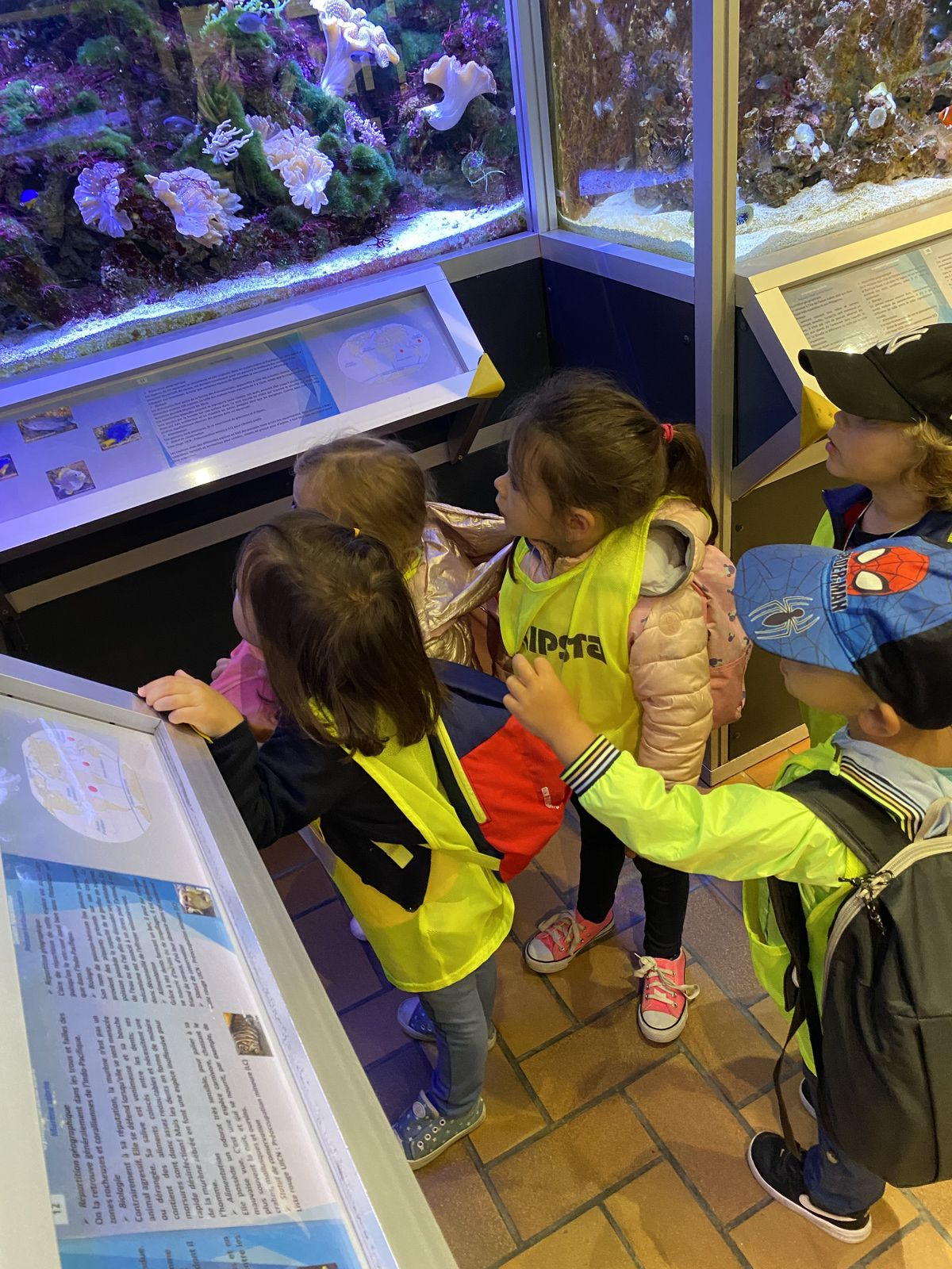 Condorcet-Mat-Groupe 2-Plage et aquarium de Dunkerque