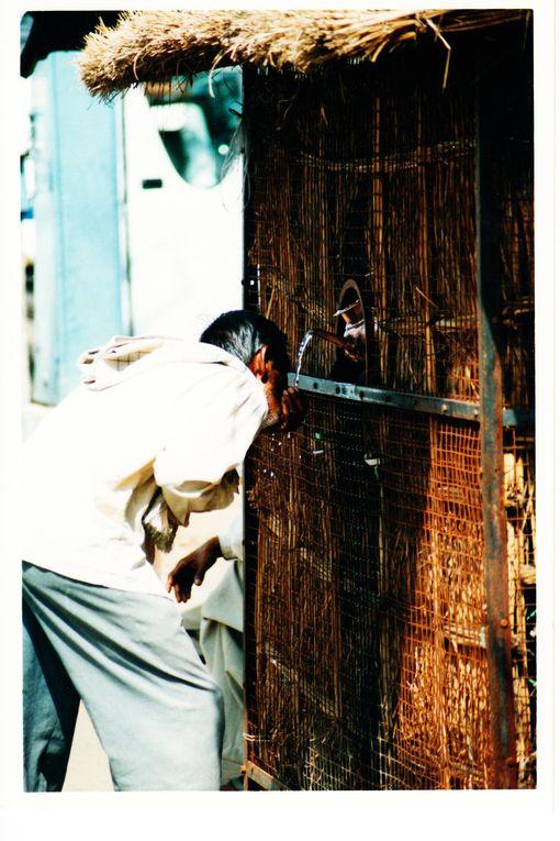 Album - INDE-DU-NORD-2002