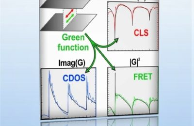 Complete Electromagnetic Dyadic Green Function Characterization in a Complex Environment—Resonant Dipole-Dipole Interaction and Cooperative Effects
