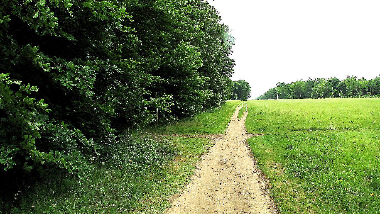l'Avenue des Beaux Monts