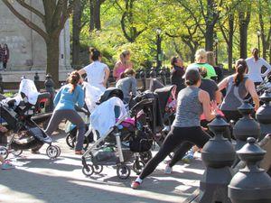 NEW YORK : Central Park et le musée d'Histoire naturelle