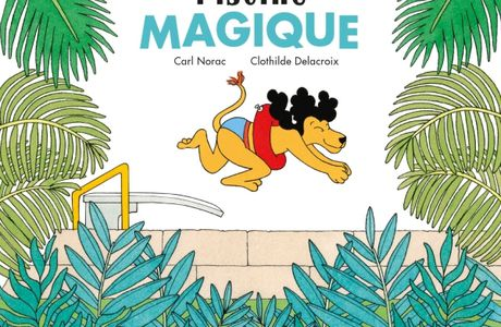 La piscine magique de Carl Norac, ill. Clothilde Delacroix - Didier Jeunesse