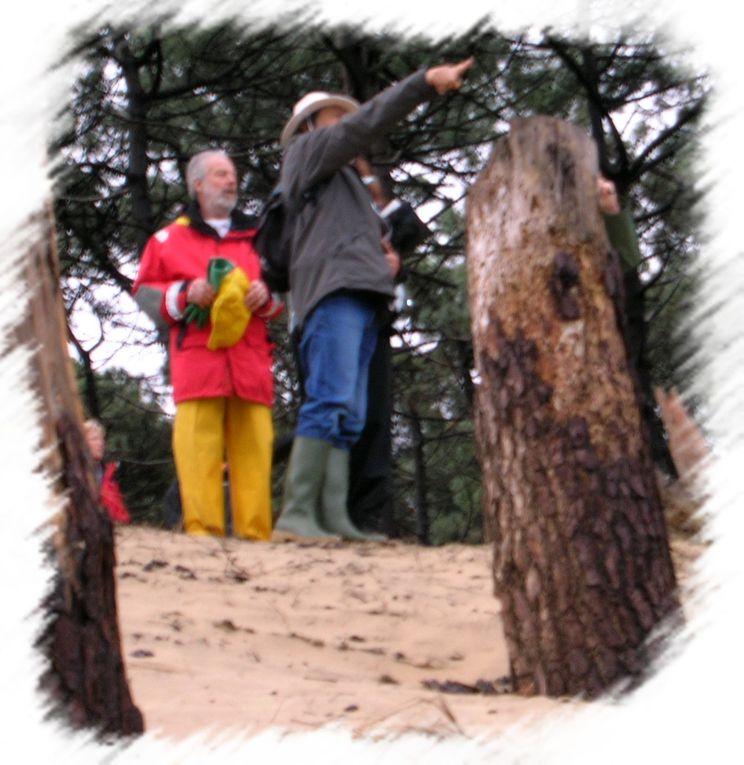 L'AST Kayak participe à l'opération plages propres organisée par la municipalité de La Teste de Buch. 16 Adhérents ont participé.