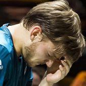 David Goffin reçoit une balle dans l'œil et abandonne en demi-finale à Rotterdam (vidéo)