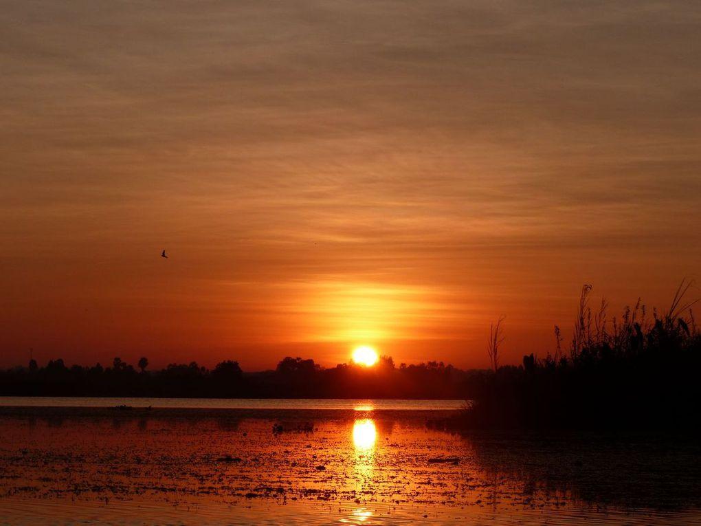 Le lever du soleil à Kumphawapi - La couleur du ciel (18-33)