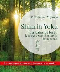 Shinrin Yoku ou les bains de forêt par le Pr Yoshifumi Miyazaki