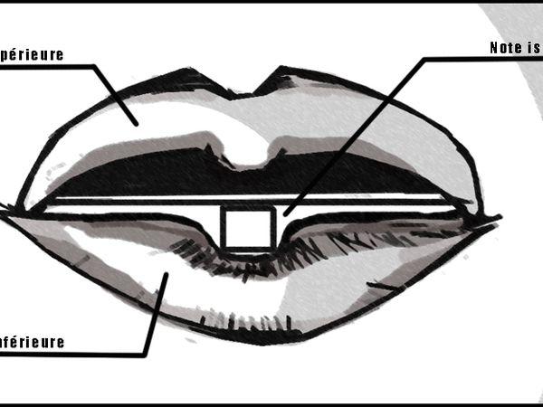 Mise en bouche de votre harmonica