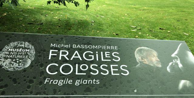 Fragiles colosses expo jardin des plantes 5eme