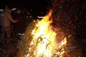 Les sapins de Noël de moins en moins brûlés