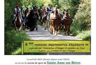 8ème Rando Départementale d'EQL 44 à Sainte-Anne-sur-Brivet dimanche 17 septembre 2017