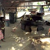 Les peuples originaires du Suriname - coco Magnanville