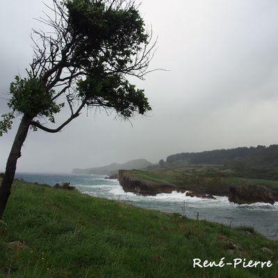 2122 : Asturies 04 - Punta de Buelna -Pendueles.