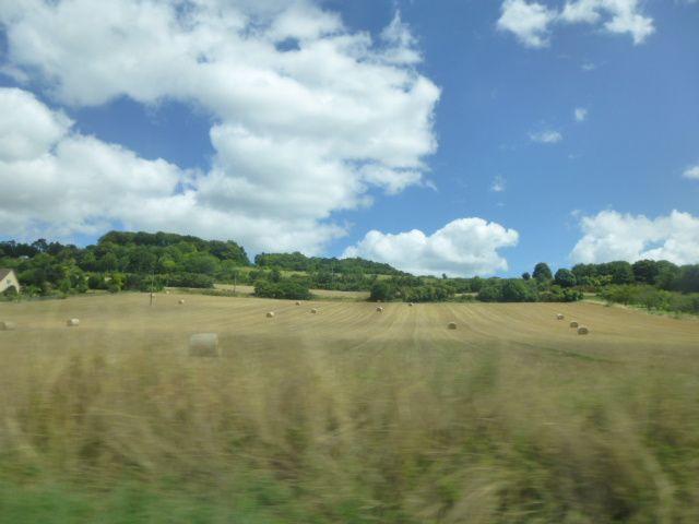 Album - Vallee-de-la-Seine, à découvri par ses paysages naturels, entre boucles et berges