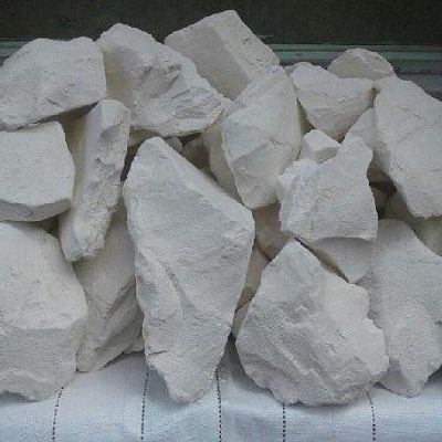 Global Diatomite (Diatomaceous Earth) Market Situation and Prospects Forecasts to 2025