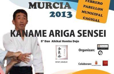 2013-02-16 - Kaname Ariga