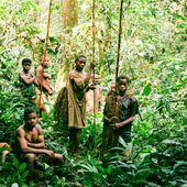 Dans le bassin du Congo, les Pygmées sacrifiés sur l'autel de la protection de la nature
