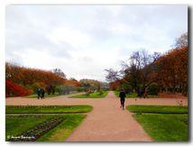 Running au Jardin des Plantes à Paris