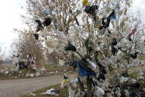 JE refuse les sacs plastique