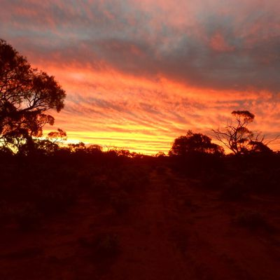 Alice Springs & the Red Center