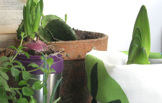 Urban Jungle Bloggers * Creative plant pot