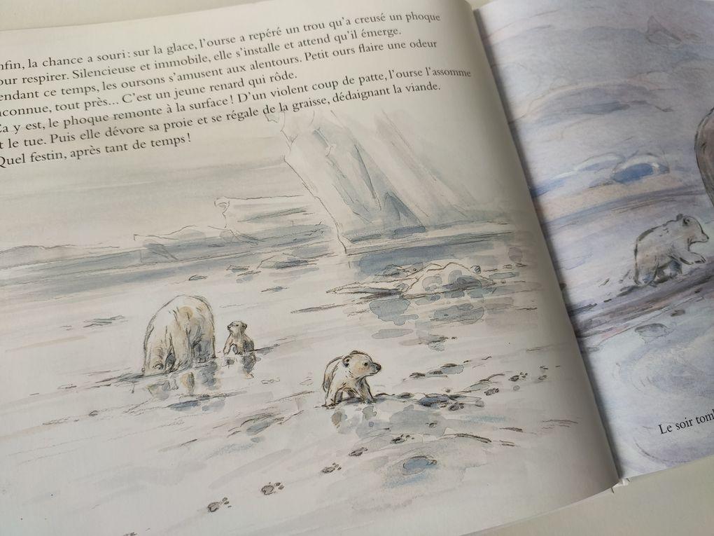 Ourson blanc. Claude K. DUBOIS – 1996 (Dès 5 ans)
