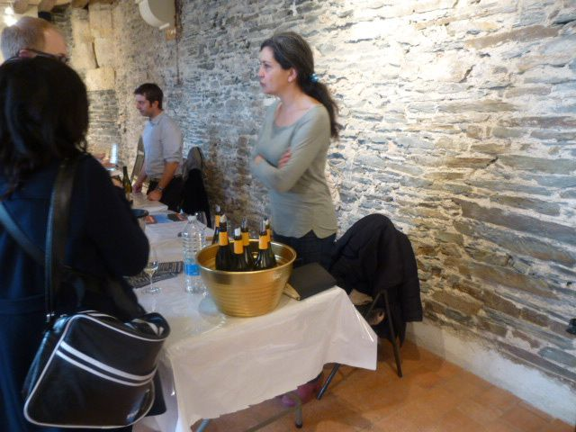 Album - Salon-Grenier-Saint-Jean-2013-Angers