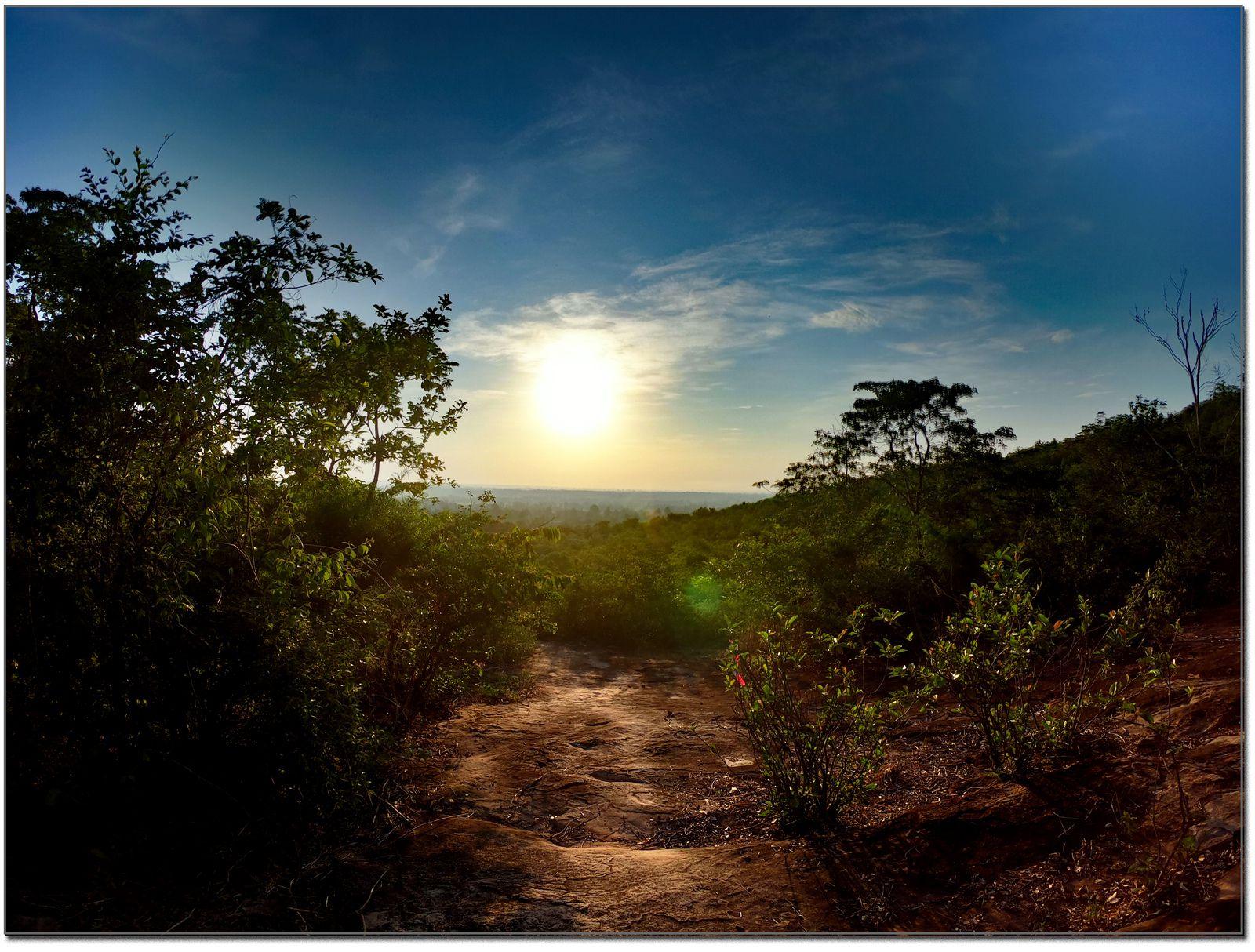 Photos et vidéo de nos promenades (Thaïlande)