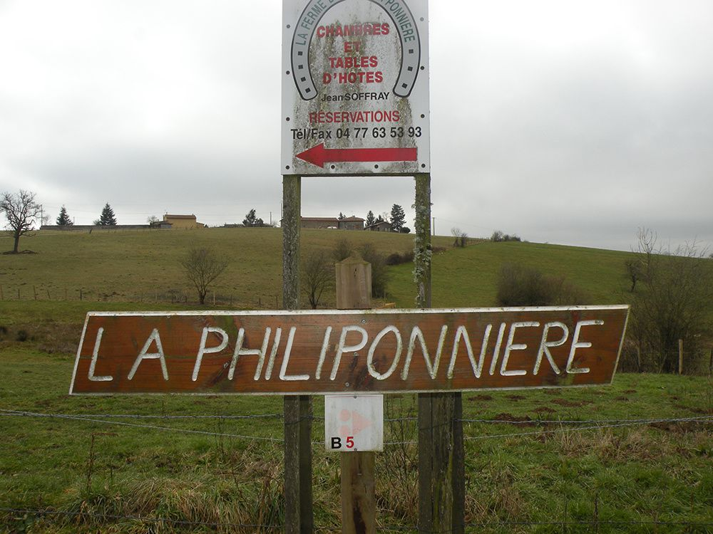 Campagne félinoise