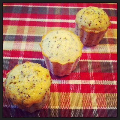 Bouchées moelleuses citron/pavot