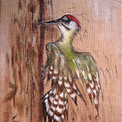 Pic Vert  - Woodpecker