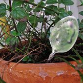 Antique Spoon Plant Markers . How To-sday - Shrimp Salad Circus