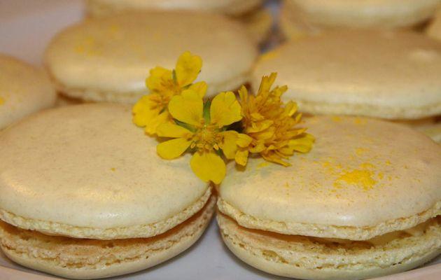 Macarons au citron jaune et basilic, recette de Christophe Felder