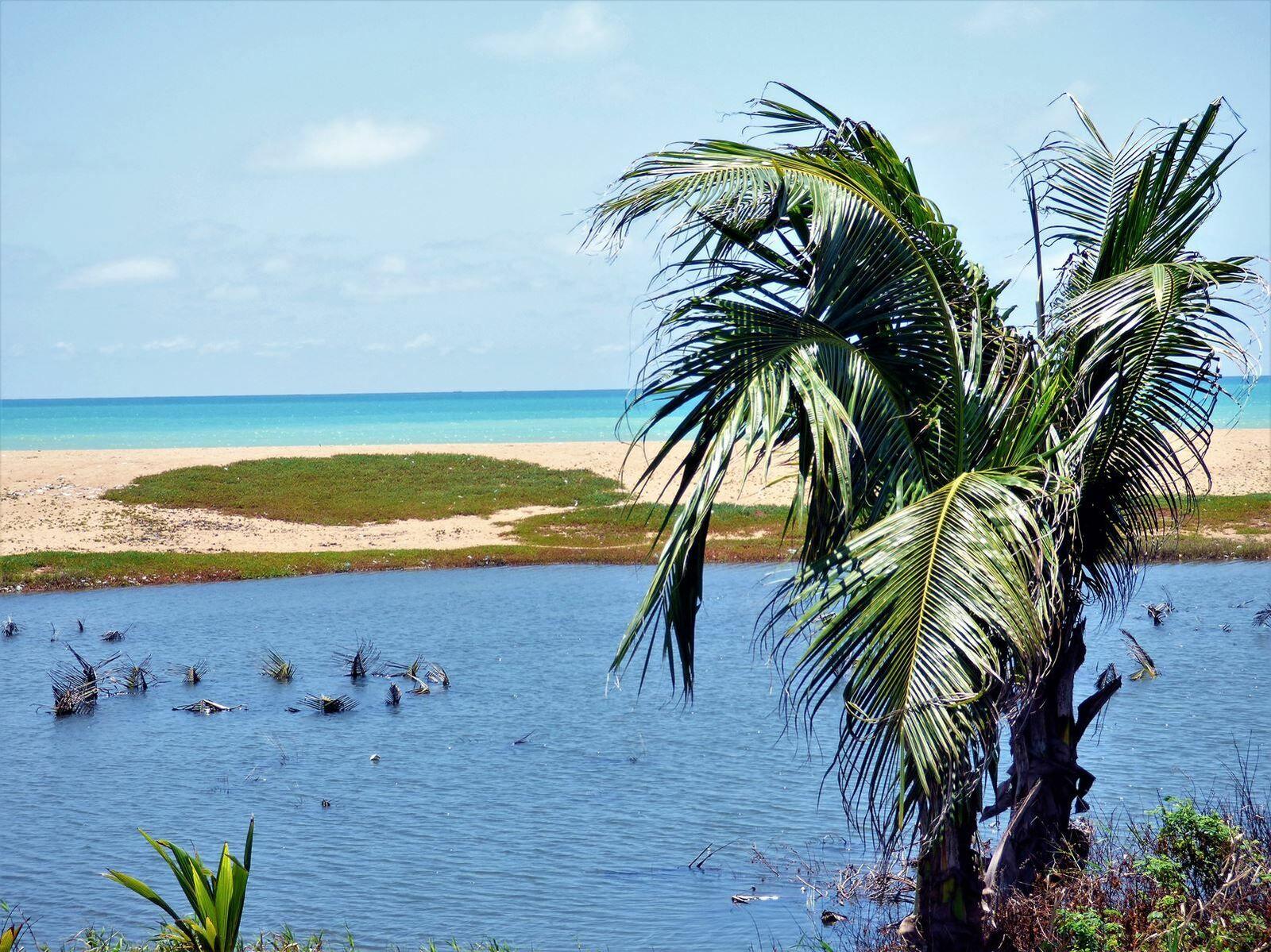 Sur la route vers le Bénin qui longe l'océan.