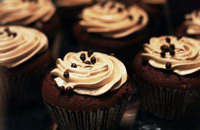 Gourmandises - Nourriture - Cupcakes - Douceurs - Photographie -  Wallpaper - Free