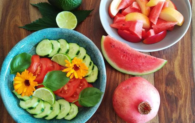 Alimentation vivante et lacto-fermentation