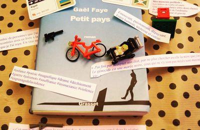 Petit Pays de Gaël Faye: un vrai coup de cœur